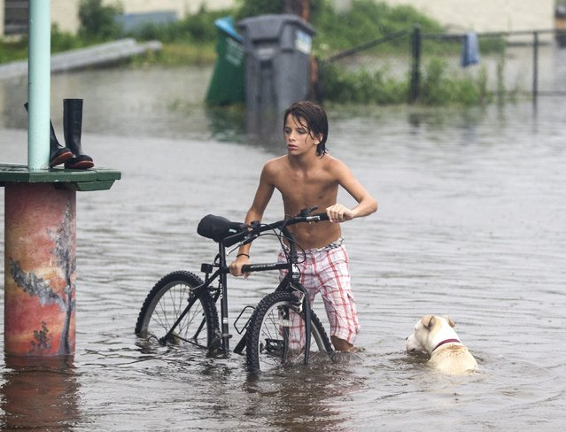A young man and his dog wades in the storm surge from Hurricane Hermaine outside Cooter Stew Cafe on September 1, 2016 in Saint Marks, Florida. Hurricane warnings have been issued for parts of Florida's Gulf Coast as Hermine is expected to make landfall as a Category 1 hurricane (Photo by Mark Wallheiser/Getty Images)