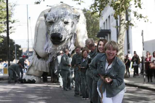 British actress Emma Thompson wears a painted polar bear paw on her face as she helps to pull a robot polar bear, during an environmental gathering outside the Shell Centre in central London, Britain September 29, 2015. Royal Dutch Shell has abandoned its Arctic search for oil after failing to find enough crude, a move that will appease environmental campaigners and shareholders who said its project was too expensive and risky. (Photo by Suzanne Plunkett/Reuters)