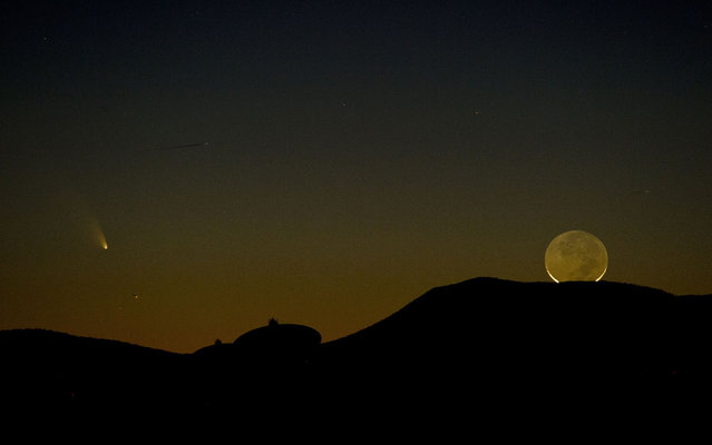 Comet PanSTARRS (L) is seen with a one-day old crescent moon as both set over the Very Large Array radio telescope antenna dishes March 12, 2013 near Magdalena, New Mexico, USA. (Photo by Stan Honda/AFP Photo)