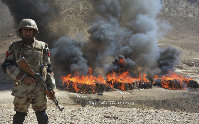 A Pakistani security official from the Anti-Narcotic Control Forces stands guard while burning piles of seized drugs and liquor, in Quetta, Pakistan, Thursday, October 20, 2016. Pakistan is taking strict measures to stop drug trafficking from neighboring Afghanistan and Pakistani tribal areas. (Photo by Arshad Butt/AP Photo)