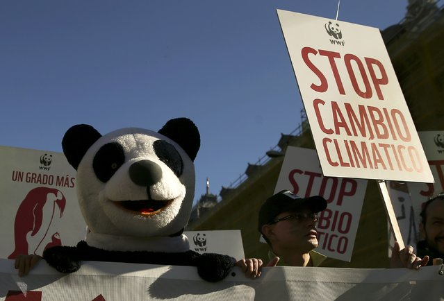 """A protester dressed as a panda bear demonstrates during a rally held the day before the start of the Paris Climate Change Summit in Madrid, Spain, November 29, 2015. The placard reads: """"Stop Climate Change"""". (Photo by Andrea Comas/Reuters)"""