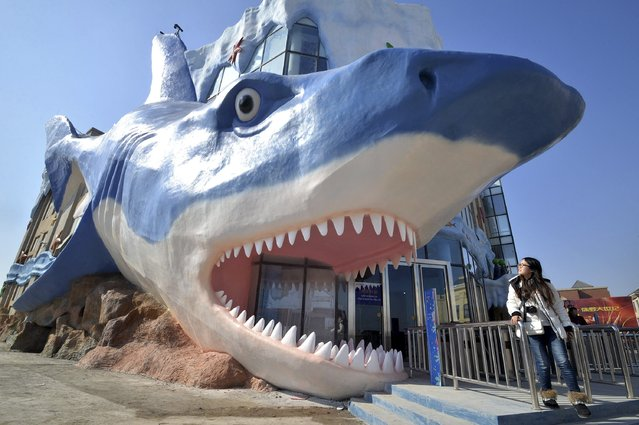 A visitor looks at a newly-built giant statue in the shape of a shark at an aquarium in Handan, Hebei province February 5, 2015. The statue is 34-metres-long and 16-metres-tall, according to local media. (Photo by Reuters/China Daily)