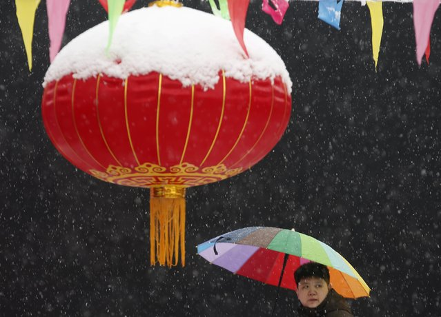 A man walks past a snow-covered large lantern on the second day of the Chinese Lunar New Year during the temple fair in celebration of Chinese New Year, at a park in Beijing, February 20, 2015. (Photo by Kim Kyung-Hoon/Reuters)