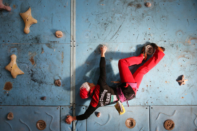 In this Monday, January 18, 2016 photo,  Iranian rock climber, Farnaz Esmaeilzadeh, scales a climbing gym in the city of Zanjan, some 330 kilometers (207 miles) west of the capital Tehran, Iran. (Photo by Ebrahim Noroozi/AP Photo)