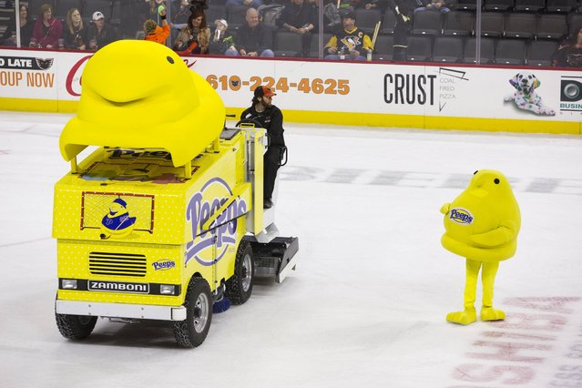 Just in time for spring, the sweetest machine on ice, the new PEEPS® Zamboni® machine is unveiled at the Lehigh Valley Phantoms hockey game in Allentown, Penn. on Sunday, March 22, 2015. (Photo by Mark Stehle/Invision for PEEPS®/AP Images)