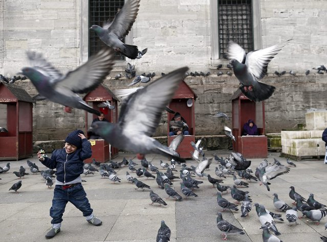 A Turkish boy plays with pidgeons front of the Yeni Mosque in Istanbul, Turkey, 17 March 2016. EU leaders on 17 and 18 March are to discuss a deal with Turkey that is aimed to tackle the migration crisis and curb migration into the bloc. Furthermore, a German school and the consulate in Istanbul were closed after terror warnings. (Photo by Sedat Suna/EPA)