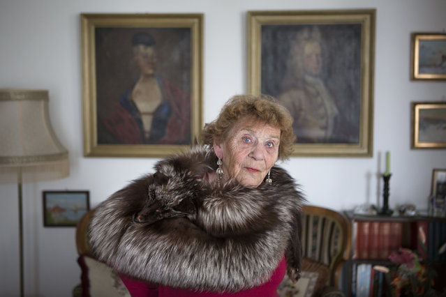 """Hedvig in her Norwegian Flat, Age 86"". Hedvig Rossbach Wist. Age 86. Wrapped in her century old fox stole and surrounded by precious heirlooms, she looks on while canvas portraits of her ancestors line the walls. Nestled in the town of Kristiansund on the Norwegian coast, antiques fill her flat. Photo location: Kristiansund, Norway. (Photo and caption by Catherine Hall/National Geographic Photo Contest)"