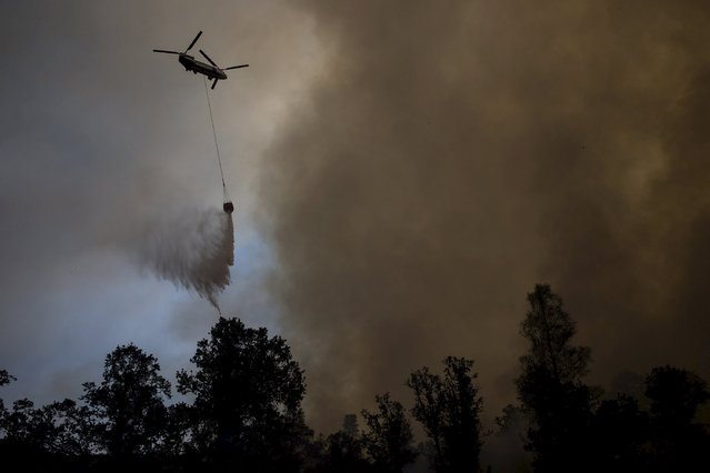 A helicopter drops water on the Rocky Fire in Lake County, California July 30, 2015. (Photo by Max Whittaker/Reuters)