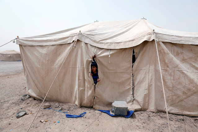 An Iraqi child, who fled from Falluja because of Islamic State violence, looks through a tent at a refugee camp in Ameriyat Falluja, south of Falluja, Iraq, June 16, 2016. (Photo by Ahmed Saad/Reuters)