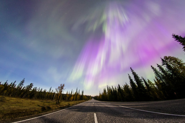 The Aurora Borealis (Northern Lights) is seen over the sky near the village of Pallas (Muonio region) of Lapland, Finland September 8, 2017. (Photo by Alexander Kuznetsov/Reuters)