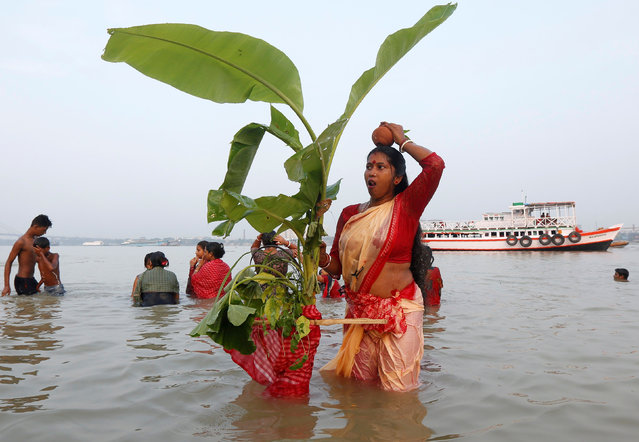 A Hindu devotee ululates as she holds a banana tree trunk after taking a dip in the waters of the Ganges river during a ritual as part of the Durga Puja festival in Kolkata, India, September 27, 2017. (Photo by Rupak De Chowdhuri/Reuters)
