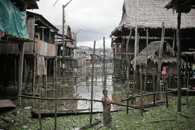 Peru, Iquitos. Belém, a shanty town built on the Amazon River on April 2005. (Photo by Jean-Claude Coutausse)