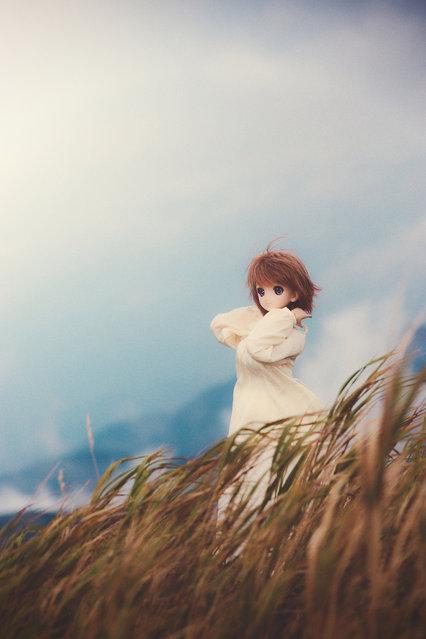 Dolls. On a wind. (Suzuhico)