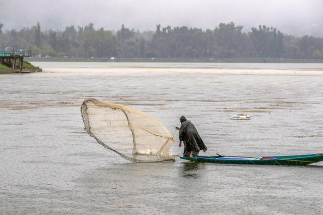 A Kashmiri fisherman casts his net as it rains at the Dal Lake on the outskirts of Srinagar, Indian controlled Kashmir, Thursday, August 27, 2020. Heavy rains caused landslides and flash floods, resulting in the continued closure of the Srinagar – Jammu highway. (Photo by Dar Yasin/AP Photo)