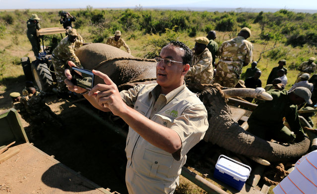 Kenya's Cabinet Secretary for Tourism Najib Balala takes a selfie during a translocation exercise to Ithumba Camp in Tsavo East National Park, in Solio Ranch in Nyeri County, Kenya February 21, 2018. Veterinary officers drew blood samples from the elephants for health screening and recording purposes, besides fitting the monitoring collars that give rangers early warnings if the animals stray too close to human habitation. (Photo by Thomas Mukoya/Reuters)