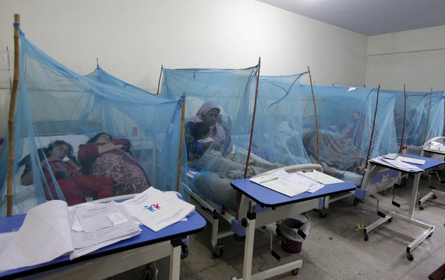 A woman holds her son, suffering from dengue fever, as she sits under a mosquito net inside a dengue ward of a local hospital in Rawalpindi, Pakistan, October 22, 2015. According to local media, thousands of patients suffering from dengue, a mosquito-borne disease, registered in various hospitals in Punjab and Sindh province. Pakistan suffered one of its worst dengue outbreaks in 2011, when over 300 people died of the mosquito-borne disease. (Photo by Faisal Mahmood/Reuters)