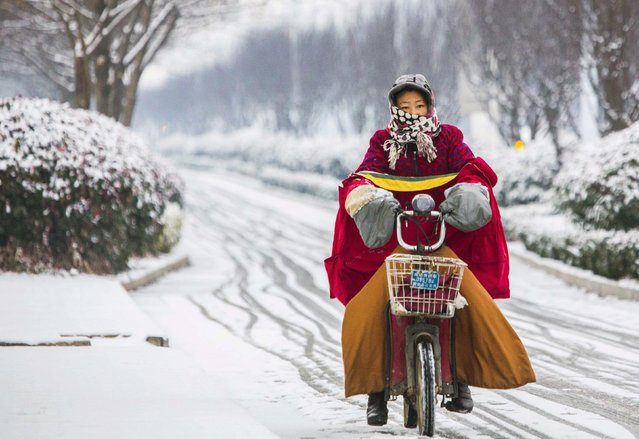 A woman rides her electric bicycle along a street amid snowfall in Lianyungang, Jiangsu province January 29, 2015. (Photo by Reuters/China Daily)