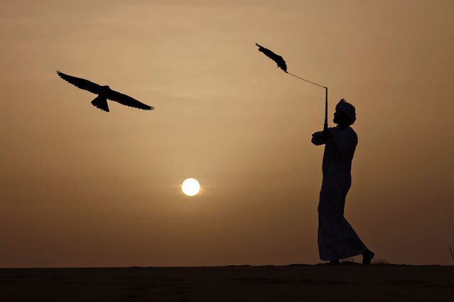 An Emirati falconer trains his falcon before the end of the season in the United Arab Emirates' al-Dhafra desert on March 19, 2021. (Photo by Karim Sahib/AFP Photo)