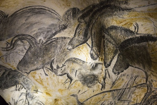 A replica of pre-historic drawings showing horses, rhinoceros and aurochs is seen on a wall during a press visit at the site of the Cavern of Pont-d'Arc project in Vallon Pont d'Arc April 8, 2015. (Photo by Robert Pratta/Reuters)