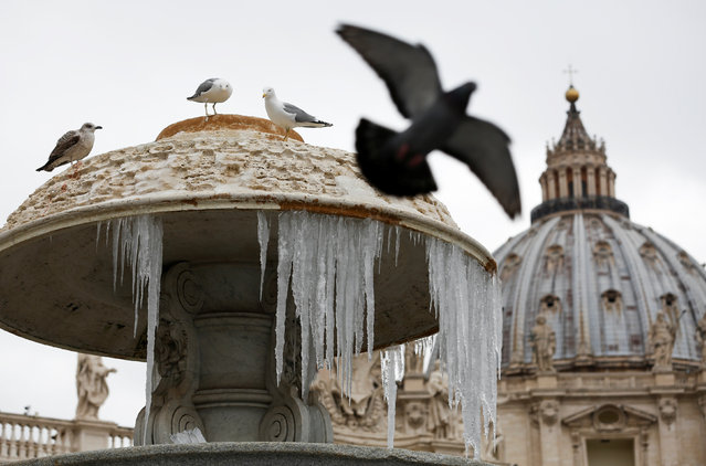 Ice covers a frozen fountain as Pope Francis leads his Sunday Angelus prayer in Saint Peter's square at the Vatican January 8, 2017. (Photo by Tony Gentile/Reuters)