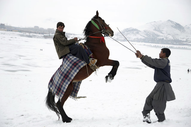 A man shows off his horse skills in an effort to attract customers to take a ride, on the outskirts of Kabul, Afghanistan, Wednesday, January 30, 2019. (Photo by Rahmat Gul/AP Photo)