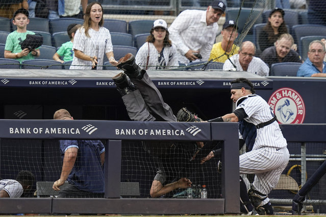 New York Yankees catcher Gary Sanchez, right, watches as home plate umpire Angel Hernandez, center, flips over the railing of the Tampa Bay Rays dugout during the sixth inning of a baseball game Sunday, October 3, 2021, in New York. Gio Urshela caught a foul ball by Austin Meadows for an out on the play. (Photo by Frank Franklin II/AP Photo)