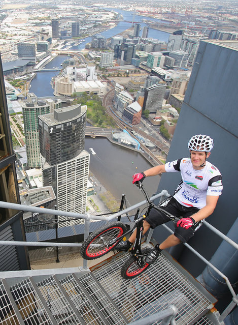 Krystian Herba, a Polish extreme cyclist jumps up the steps of Eureka Tower on a bicycle as he breaks a Guinness World Record at Eureka Tower on February 4, 2014 in Melbourne, Australia. Herba jumped up 2,919 steps on his bicycle in 1 hour 45 minutes without supporting himself with his hands or feet to break his own Guinness World Record. (Photo by Scott Barbour/Getty Images)