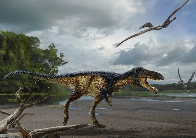 A life reconstruction of the new tyrannosaur Timurlengia euotica, accompanied by two flying reptiles (Azhdarcho longicollis) in their environment 90 million years ago, is pictured in this undated illustration released on March 14, 2016. (Photo by Reuters/Original painting by Todd Marshall/Proceedings of the National Academy of Sciences)