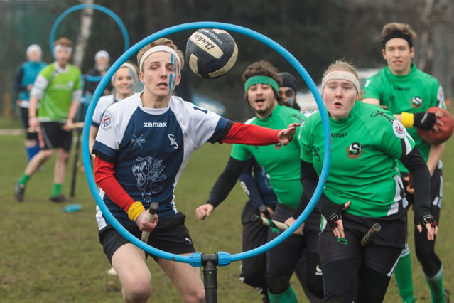 """The London Unspeakables seeker catches the snitch during a game at the Crumpet Cup quidditch tournament on Clapham Common on February 18, 2017 in London, England. Quidditch is the fictional game played by Hogwarts students in JK Rowling's Harry Potter novels.  In 2005 two college students in Vermont created """"Muggle Quidditch"""" to be played on a field for non-magical participants. The sport took off and is now played by  hundreds of teams across the world with a global cup competition every two years. True to the original game two teams of seven players sitting astride """"broomsticks"""". Each team has to advance the quaffle ball to one of three opposing hoops against bludgers who knock out the players. The game is won when the snitch (a tennis ball in a sock) is caught and whoever has the most points wins. (Photo by Jack Taylor/Getty Images)"""