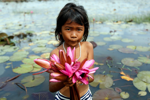 A girl collects water lily flowers at a pond in Kampong Speu province Cambodia, March 24, 2017. Picture taken March 24, 2017. (Photo by Samrang Pring/Reuters)