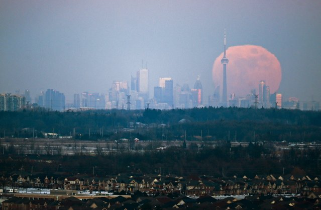 The moon rises over the Toronto city skyline as seen from Milton, Ontario, Canada, January 23, 2016. (Photo by Mark Blinch/Reuters)