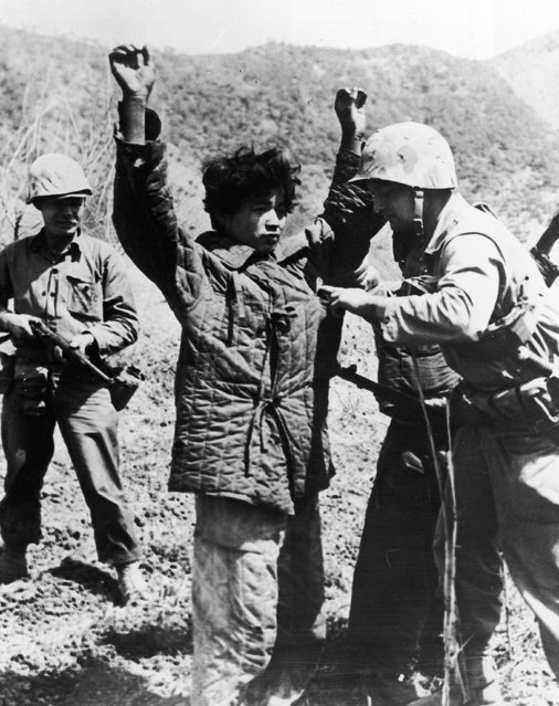 An American Marine searching a captured Chinese Communist in Korea, 19th June 1951. (Photo by Central Press)