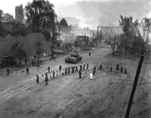 A U.S. Marine tank follows a line of prisoners of war down a village street.  September 26, 1950. (Photo by S. Sgt. John Babyak, Jr., Marine Corps)