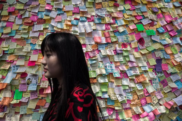 A woman walks past a wall of post it messages of support near an occupied area in Hong Kong on October 7, 2014. Small knots of pro-democracy demonstrators remained on Hong Kong's streets after protest leaders agreed to talks with the government and dwindling demonstrator numbers dropped further. (Photo by Philippe Lopez/AFP Photo)