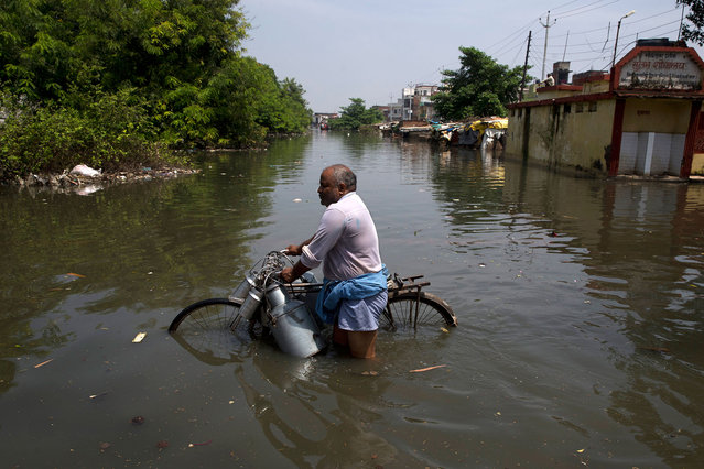 An Indian milkman wades through flooded water with his bicycle in Varanasi, India, Friday, August 26, 2016. Misery eased somewhat, with rains ebbing over the past three days in Uttar Pradesh state, where 200,000 people had moved to relief centers after their homes were submerged, said Deepak Singhal, a state official. (Photo by Tsering Topgyal/AP Photo)