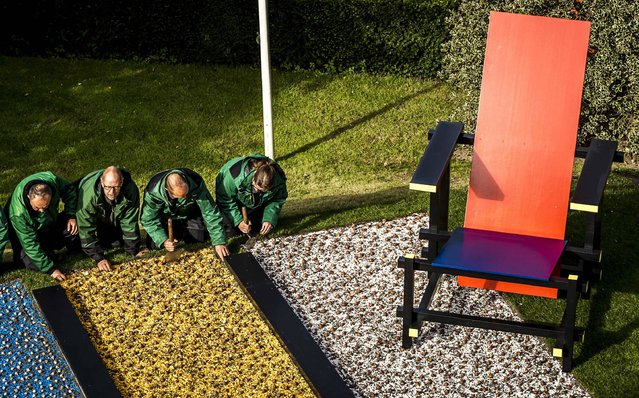 Gardening employees plant bulbs in the form of a mosaic inspired by the painter Piet Mondrian, following the theme of Dutch Design for the floral attraction, in Lisse on October 6, 2016. (Photo by Remko de Waal/AFP Photo/ANP)
