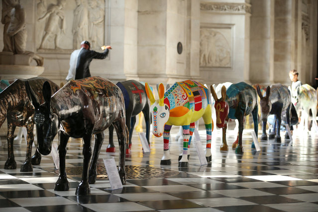 """Artist painted donkey statues are displayed in the """"Caravan"""" exhibition on August 30, 2013 in London, England. (Photo by Peter Macdiarmid/Getty Images)"""