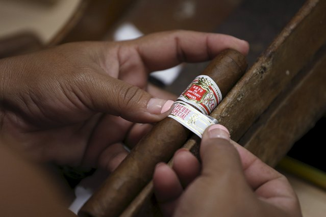 A woman fixes a band on a cigar at the Corona Tobacco factory in Havana, March 3, 2016. (Photo by Alexandre Meneghini/Reuters)