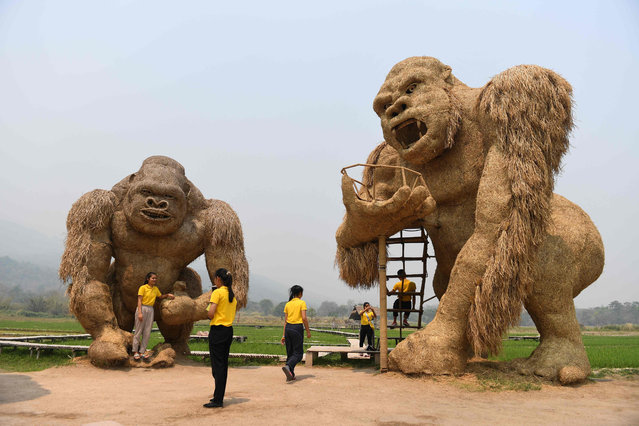 Students take photos with a giant King Kong sculptures made out straw in the northern Thai province of Chiang Mai on April 3, 2019. (Photo by Lillian Suwanrumpha/AFP Photo)