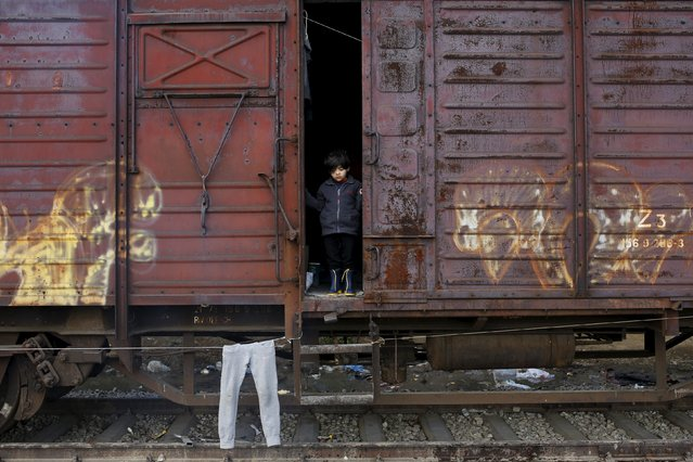 A child looks outside a train wagon at a makeshift camp for migrants and refugees at the Greek-Macedonian border near the village of Idomeni, Greece, March 28, 2016. (Photo by Marko Djurica/Reuters)