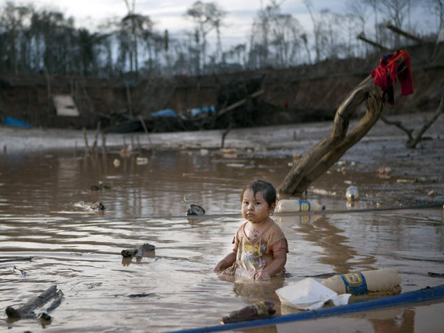 Prisaida (2) sits in the shallow waters of a polluted lagoon as her parents mine for gold nearby, in La Pampa in Peru's Madre de Dios region. The lagoon emerged as a result of miners bombarding the earth with jet streams of water in search of gold. The miners know they will be soon be evicted, Peru's government declared all informal mining illegal. (Photo by Rodrigo Abd/AP Photo)