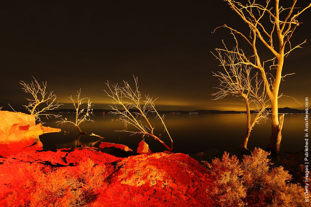 Light from a geothermal energy plant along the southern San Andreas Fault illuminates dead trees flooded by the rising waters from the Salton Sea