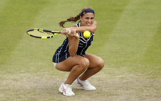 Britain Tennis, Aegon Women's Open, Nottingham Tennis Centre on June 11, 2016. Puerto Rico's Monica Puig in action during the semi final. (Photo by Peter Cziborra/Reuters/Action Images/Livepic)