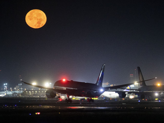 An A380 aircraft lands as the full moon shines at the international airport in Frankfurt, Germany, Sunday, October 13, 2019. (Photo by Michael Probst/AP Photo)