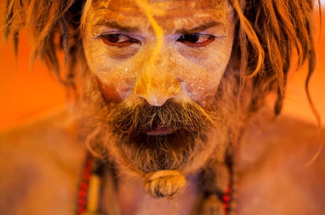A Naga sadhu, or naked Hindu holy man, pauses inside a tent during Kumbh Mela, or Pitcher festival, at Trimbakeshwar, India, Thursday, August 27, 2015. Hindus believe taking a dip in the waters of a holy river during the festival will cleanse them of their sins. The festival is held four times every 12 years. (Photo by Bernat Armangue/AP Photo)