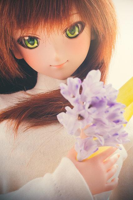 Dolls. One week, One flower No.36 -Hyacinth-. (Suzuhico)