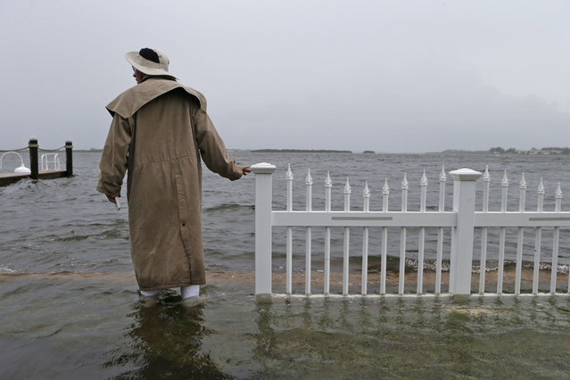 Doug LeFever inspects the seawall near his home at the Sandpiper Resort as he surveys the rising water coming from the Gulf of Mexico into his neighborhood as winds and storm surge associated with Tropical Storm Hermine impact the area on September 1, 2016 at in Holmes Beach, Florida. (Photo by Brian Blanco/Getty Images)