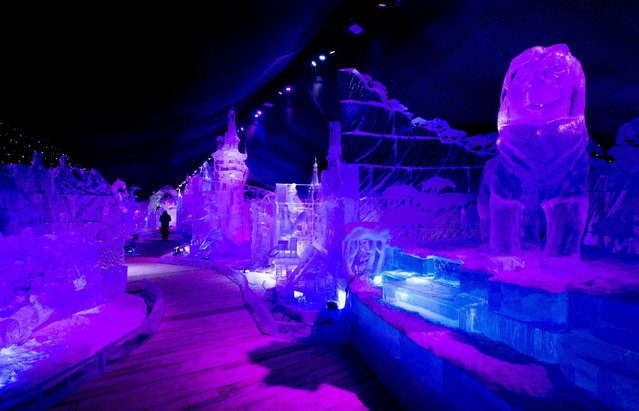 A sculptor walks past ice sculptures at the Disney Dreams Ice Festival in Antwerp November 27, 2014. (Photo by Yves Herman/Reuters)