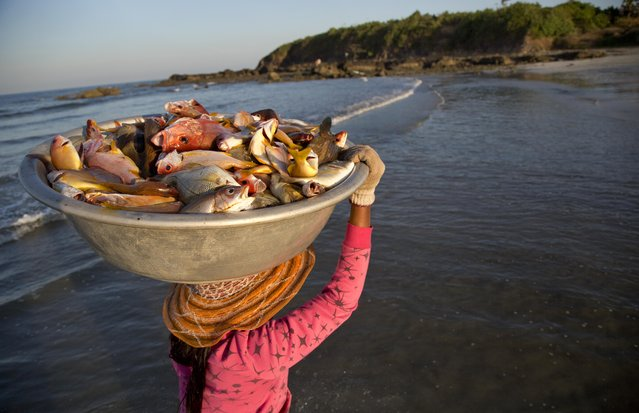 A woman carries the day's-catch from a fishing boat at Ngwe Saung beach, in eastern Ayeyarwaddy division, Myanmar, Sunday, December 28, 2014. (Photo by Gemunu Amarasinghe/AP Photo)
