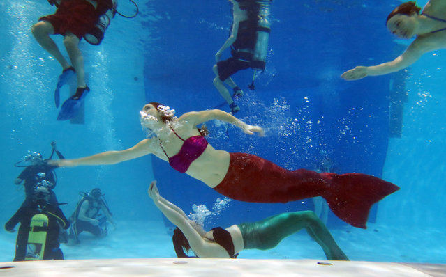 AquaMermaid founder Marielle Chartier Henault swims in a pool with a group of divers in Montreal, February 19, 2015. The school teaches kids and adults how to swim wearing mermaid tails, and offers mermaid-themed parties. (Photo by Christinne Muschi/Reuters)